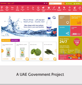 A UAE Government. Project