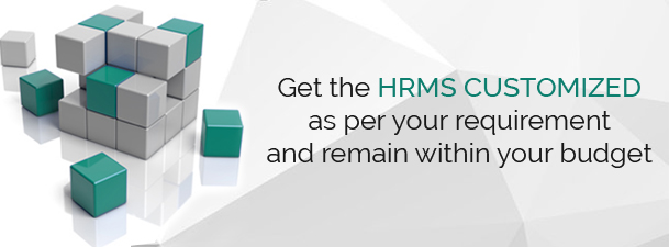 paylite - get HRMS customized within your budget